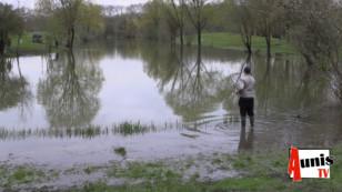 Nuaillé d'Aunis. Une pêche à la grosse truite sur l'étang aunisien