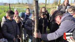 Taugon. Marais poitevin : Les plus jeunes entretiennent les arbres