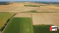 Busard cendré protection PNR Marans agriculture