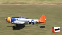 Saint Vivien Aéromodélisme mouettes rieuses avion