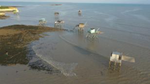 Charente-Maritime : l'attribution de pontons pour la pêche au carrelet est ouverte