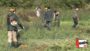 Taugon : Les élèves du lycée agricole Jacques Bujault de Melle nettoient la roselière