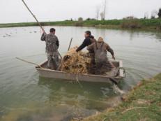 Charron : les chasseurs du village en pincent pour les canards