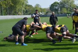 Top14. Rugby. La Rochelle : le retour des cadres du Stade Rochelais pour battre Agen samedi